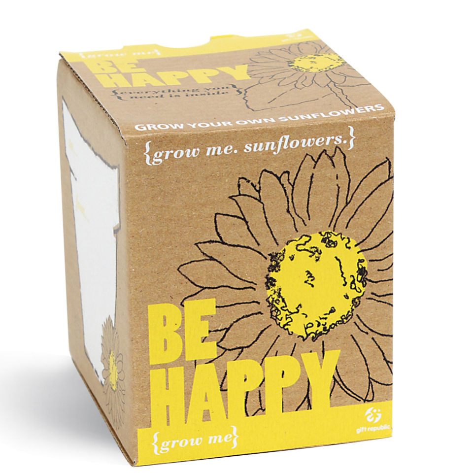 Sonnenblume Grow Me Be Happy