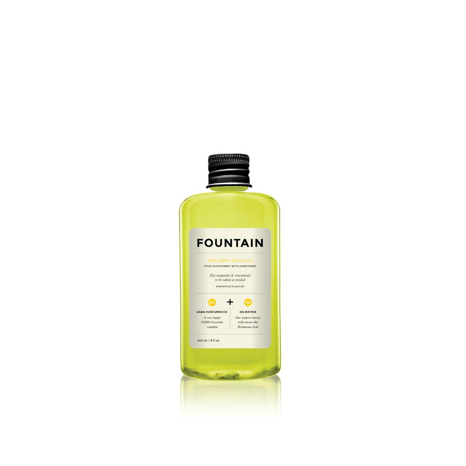 fountain-the-happy-molecule-240ml