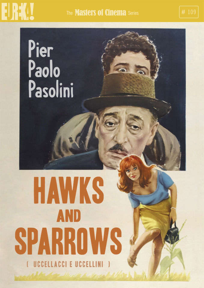 hawks-sparrows