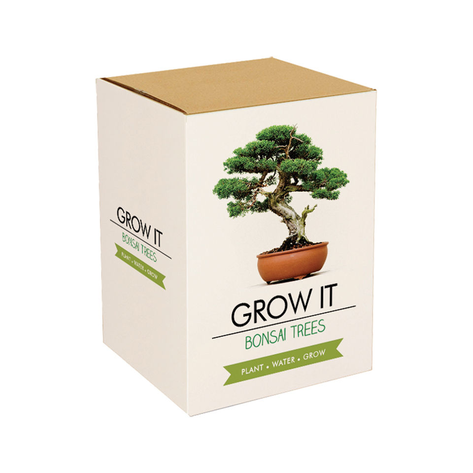 Grow it Bonsai Bäume