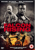 Falcon Rising: Image 1