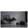 Batman Eclipse Light: Image 3