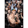 WWE Superstars 2016 - 24 x 36 Inches Maxi Poster: Image 1