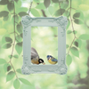 Picture Frame Bird Feeder: Image 1
