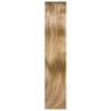 Balmain Half Wig Memory Hair Extensions - Amsterdam Ombré: Image 1