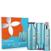 Pureology Strength Cure Christmas Gift Set: Image 1
