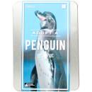 geschenkbox-adoptiere-einen-pinguin