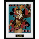 DC Comics Harley Quinn - 16 x 12 Inches Framed Photographic