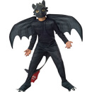 Dreamworks How to Train Your Dragon Boys' Toothless Fancy Dress - 3-4 Years