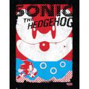sonic-the-hedgehog-art-print-14-x-11