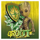 Pyramid Guardians of the Galaxy Vol. 2 (Groot Shield) 40 x 40cm Canvas Print Multi