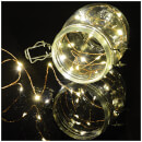 lyyt-100-led-copper-wire-warm-white
