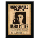 harry-potter-harry-potter-undesirable-no-1-plaque