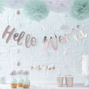 ginger-ray-hello-world-bunting-rose-gold