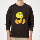 looney-tunes-tweety-sitting-pullover-schwarz-5xl-schwarz