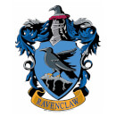 ravenclaw-emblem-cardboard-wall-cut-out-harry-potter-wizarding-world