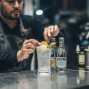 London's Highest Gin Masterclass