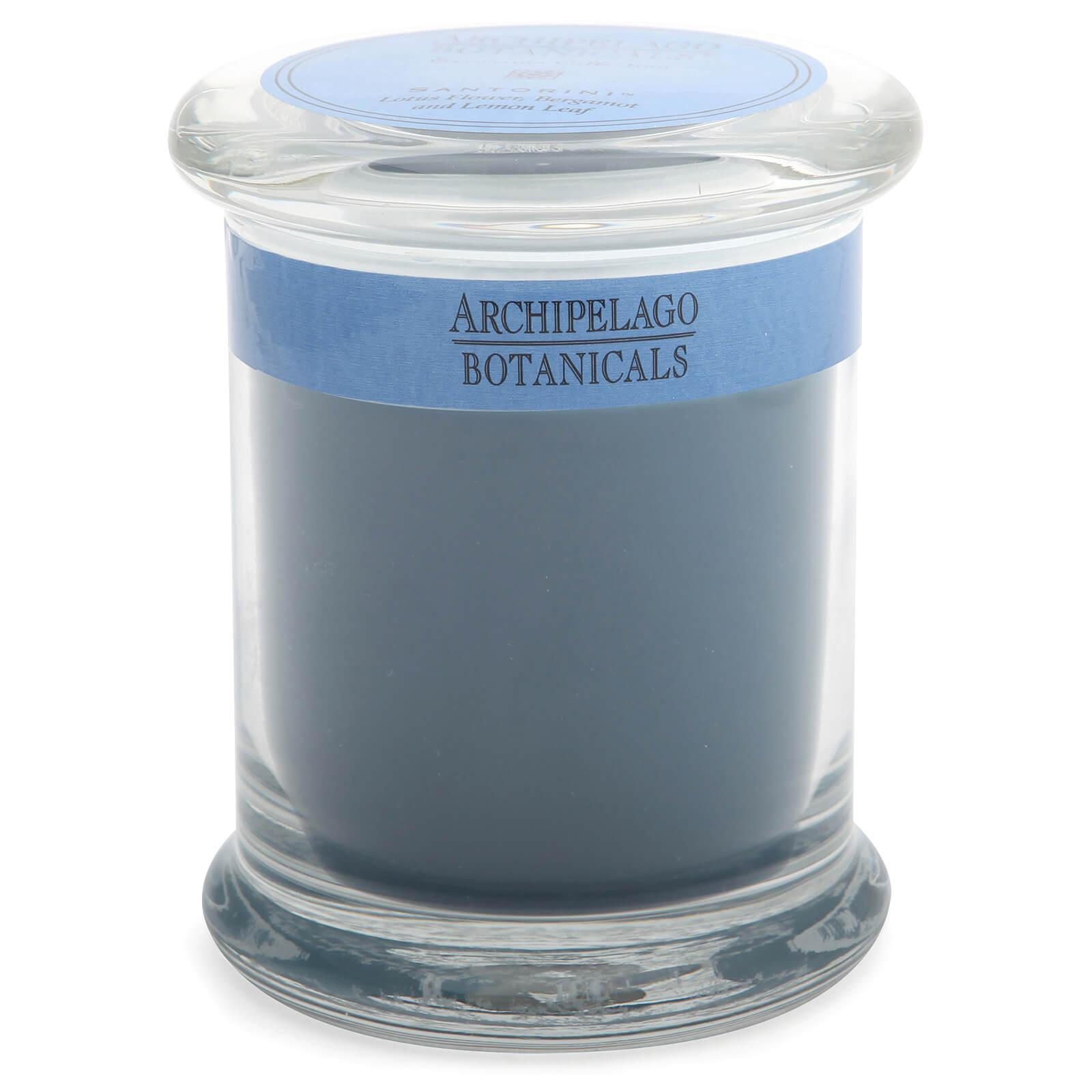 Купить Декоративная ароматическая свеча в стеклянной баночкеArchipelago Botanicals Excursions Jar Santorini Candle 244г