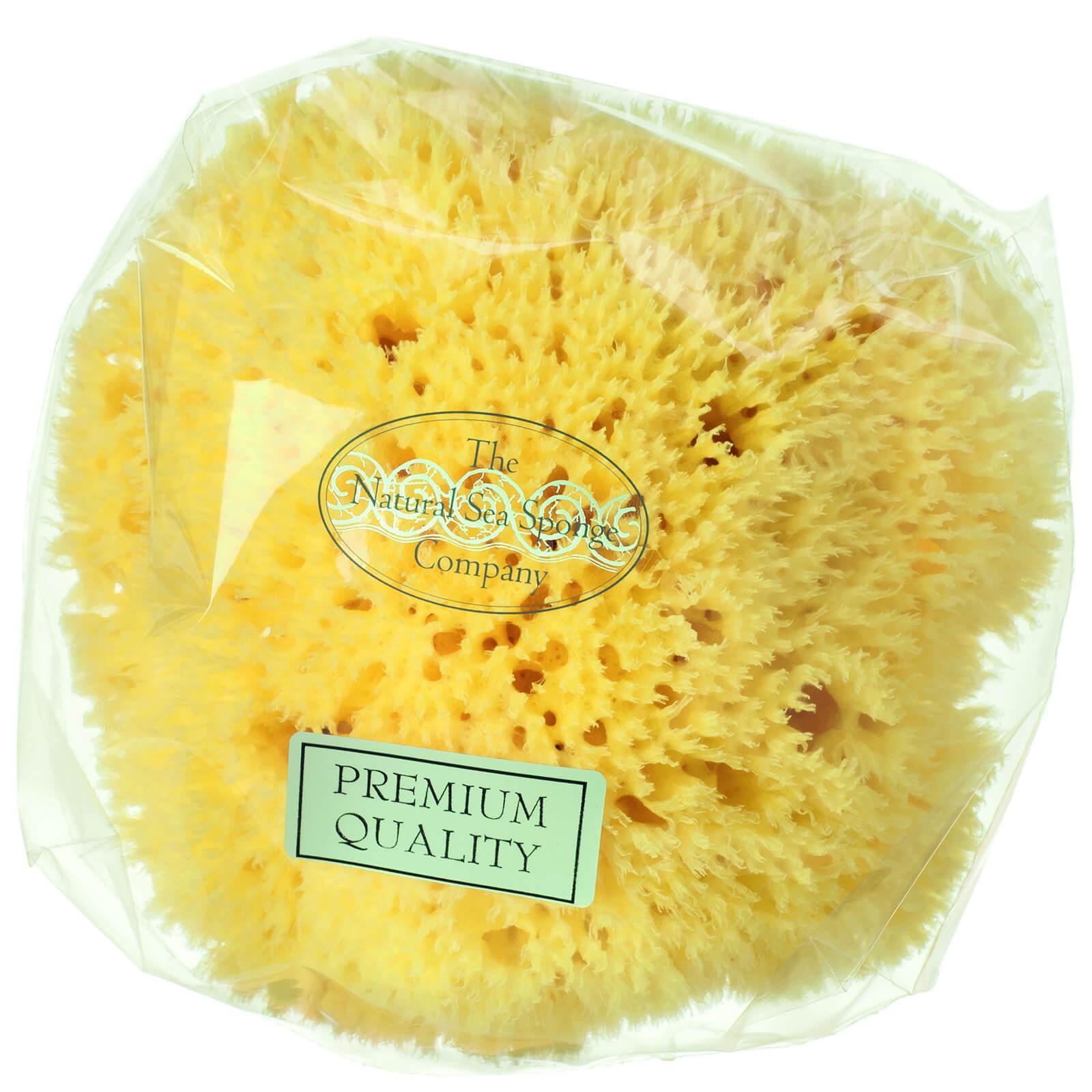 Купить Пористая натуральная морская губка Hydrea London Honeycomb Sea Sponge, размер 4−4, 5