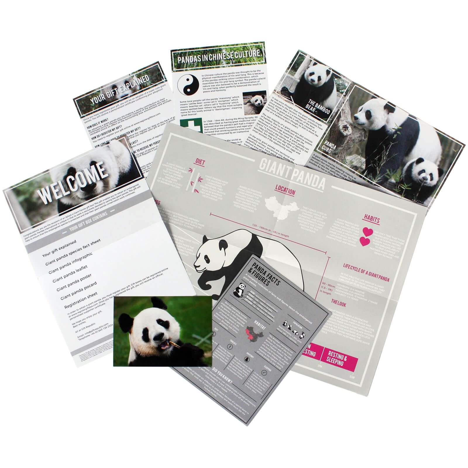 Image of Adopt A Panda