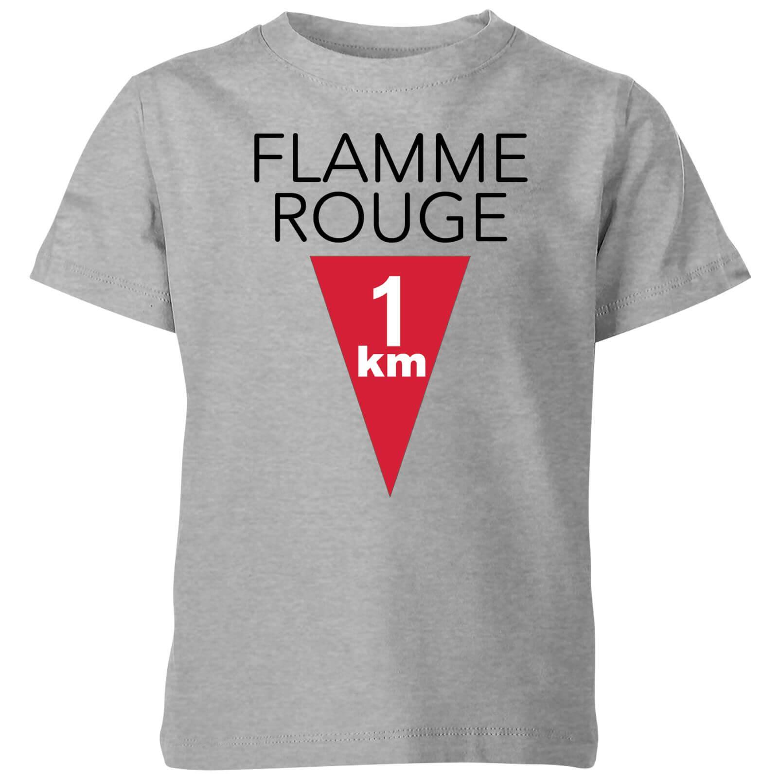 Summit Finish Flamme Rouge Kids T-shirt - Grey - 3-4 Years - Grey