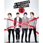 5 Seconds of Summer Album Cover - Mini Poster - 40 x 50cm