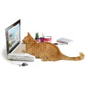 Image of Cat Laptop Scratch Pad
