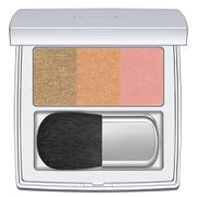 RMK Colour Performance Cheek Blusher - 03