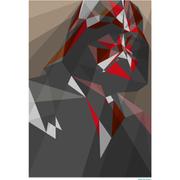 Affiche Géométrique Star Wars Dark Vador -Fine Art