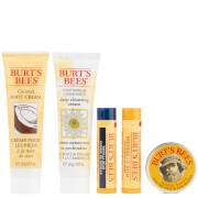 Burt's Bees Nature's Gift Set