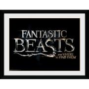 Fantastic Beasts Logo Framed Album Cover - 12