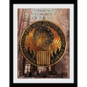Fantastic Beasts Magical Congress Framed Album Cover - 12