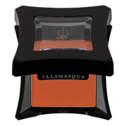 illamasqua powder eye shadow 2g (various shades) - vulgar