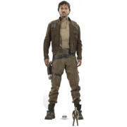 Star Wars: Rogue One Captain Cassian Andor Cut Out (Diego Luna)