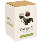 Grow It: Schlehen-Gin Geschenkbox