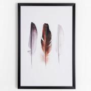 Graham & Brown Neutral Feather Trio Framed Print Wall Art