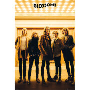 Blossoms Band - 61 x 91.5cm Maxi Poster