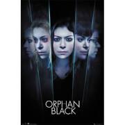 Orphan Black Faces - 61 x 91.5cm Maxi Poster