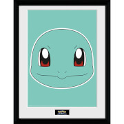 Pokémon Squirtle Face - 16 x 12 Inches Framed Photograph
