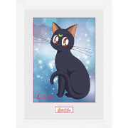Sailor Moon Luna - 16 x 12 Inches Framed Photograph