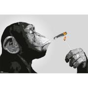 Steez Smoking - 61 x 91.5cm Maxi Poster