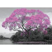 Tree Blossom - 100 x 140cm Giant Poster
