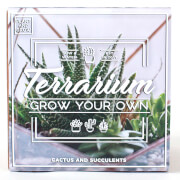 Grow Your Own Terrarium