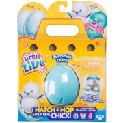 Little Live Pets Surprise Chick Single Pack - Series 2