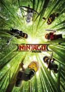 The LEGO Ninjago Movie (Digital Download)