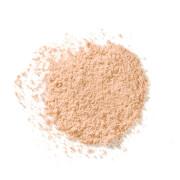 Рассыпчатая пудра Elizabeth Arden High Performance Blurring Loose Powder 17,5 г (различные оттенки) - Light 02 фото