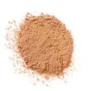 Купить Рассыпчатая пудра Elizabeth Arden High Performance Blurring Loose Powder 17, 5 г (различные оттенки) - Medium Deep 04