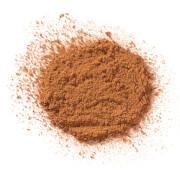 Купить Рассыпчатая пудра Elizabeth Arden High Performance Blurring Loose Powder 17, 5 г (различные оттенки) - Deep 05