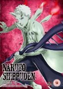 Naruto Shippuden Box 31 (Episodes 388-401)