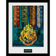 Harry Potter House Flags Collector's 12 x 16 Inches Framed Photograph